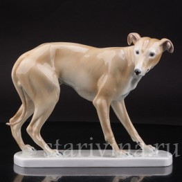 Статуэтка собаки из фарфора Левретка, Германия, нач. 20 в.